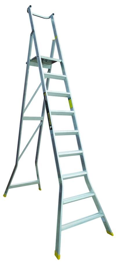 Warthog Platform Ladder